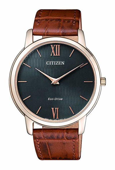 Elegant Classic Citizen