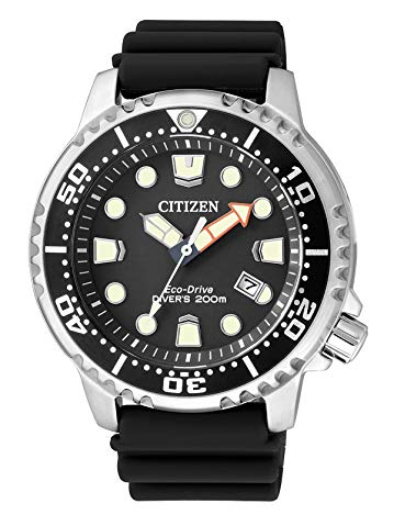 citizen diver watches