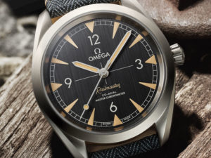 luxury watch Seamaster Railmaster